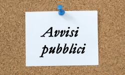 Avvisi pubblici all'albo pretorio