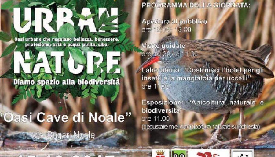 Oasi cave di Noale Urban Nature