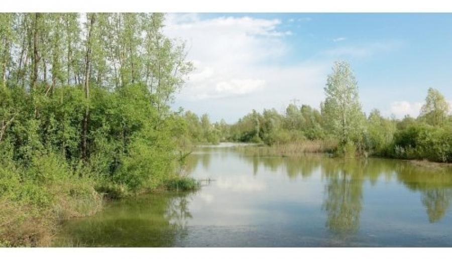 Salzano, oasi Lycaena (foto: M. Fletzer)